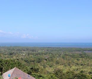 Half-Day Sightseeing Tour of Puerto Princesa Palawan