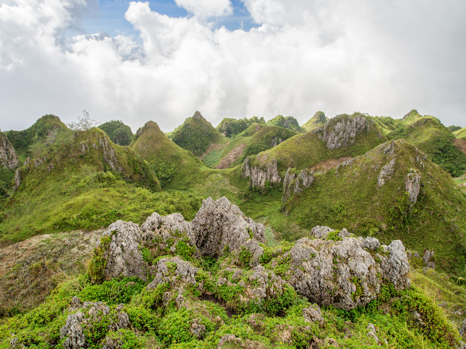 Osmeña Peak Day Hike in Cebu I With Lunch & Pick-up