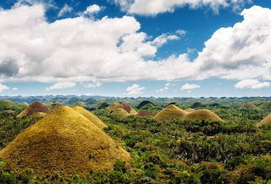 Sightseeing in Bohol with Chocolate Hills | With Lunch and Guide