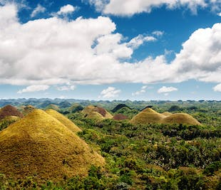 Bohol Countryside Full-Day Sightseeing | With Lunch & River Cruise