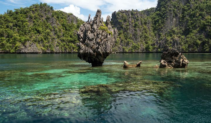 Coron Palawan Full-Day Island Hopping Tour   With Buffet Lunch