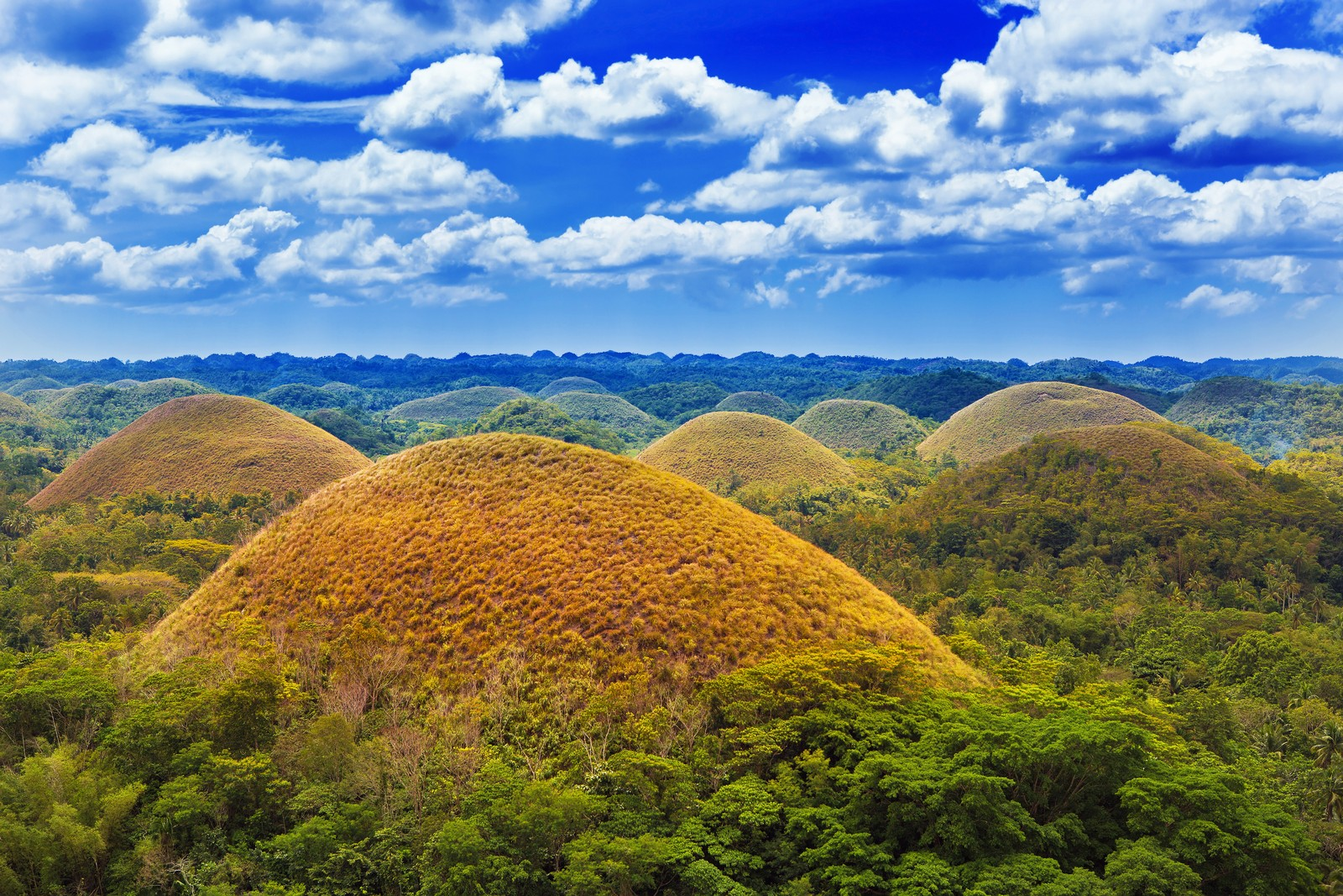 A view of Bohol's Chocolate Hills