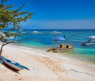 Panglao Bohol Full-Day Sightseeing | With Lunch and Transfers