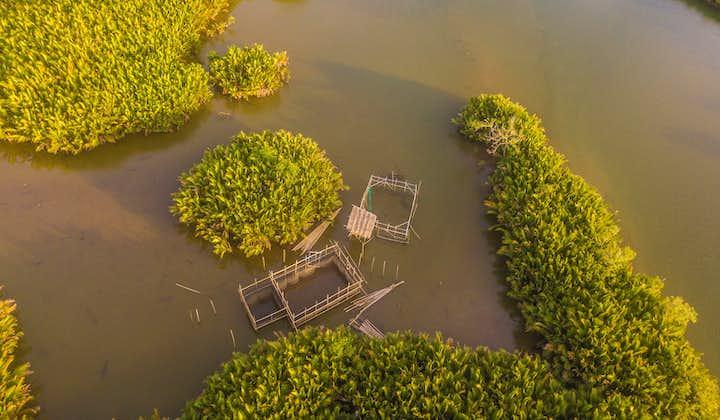 Closer aerial view of Abatan River Bohol