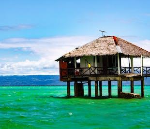 Manjuyod Sandbar Bacolod Private Full-Day Tour | With Boat Transfers