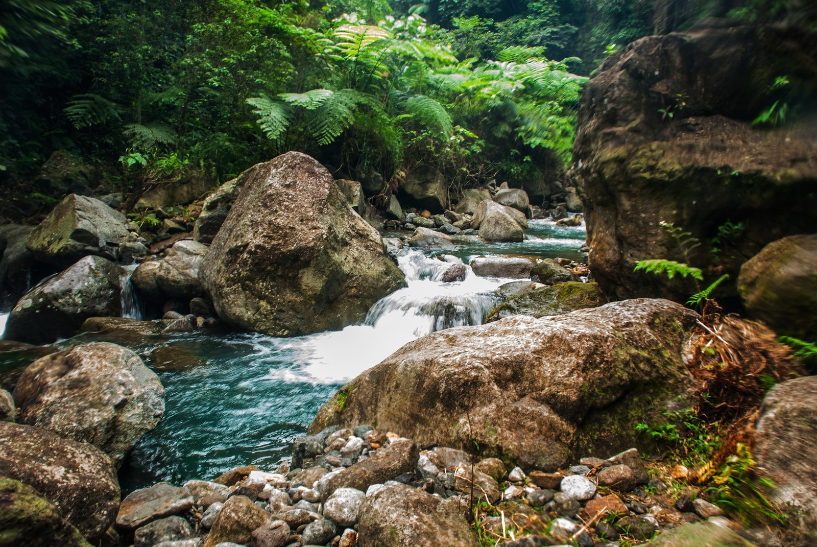 Casaroro Falls and Twin Lakes Negros Oriental Combo Tour