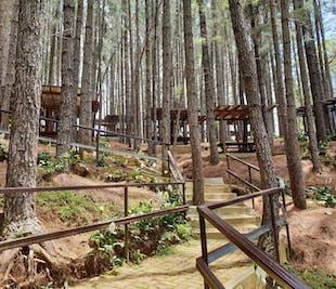 Dahilayan Forest Park Escapade | Day Tour from Cagayan De Oro