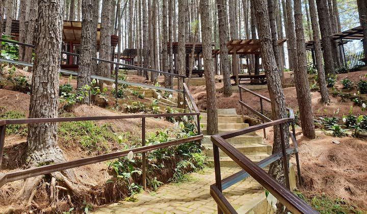 Dahilayan Forest Park Escapade   Day Tour from Cagayan De Oro