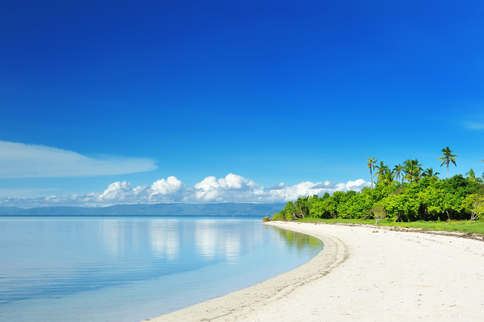 Beautiful stretch of white sand beach in Panglao Island