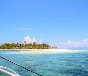 Cuatro Islas Island Hopping & 16,000 Blossoms Leyte Day Tour | With Lunch