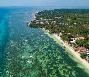 Panglao's Top Attractions I Half-Day Sightseeing Tour in Bohol