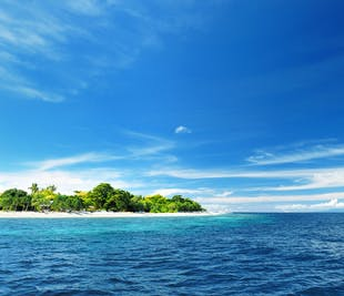 Pamilacan Island Tour in Bohol | With Balicasag & Virgin Island Side Trip
