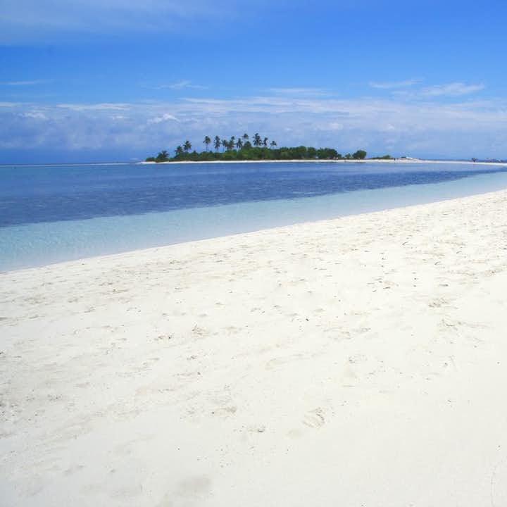 Pamilacan Island Tour in Bohol | With Balicasag & Virgin Island Side Trip