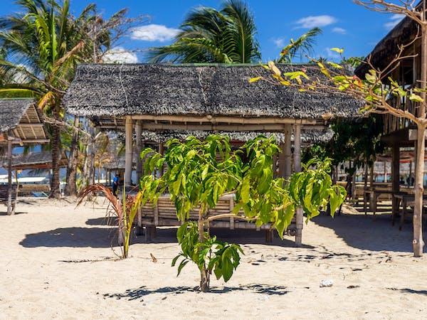 Wild Expeditions Palawan