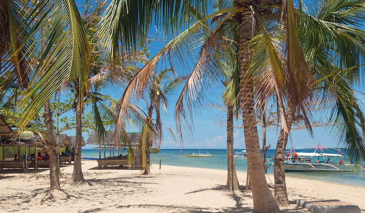 Puerto Princesa Island Hopping Tour in Honda Bay with Lunch
