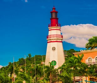 Subic Tour with Buffet Lunch | Zoobic, Ocean Adventure, Bat Kingdom