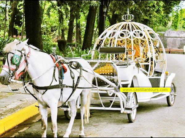 Castillan Carriage and Tour Services
