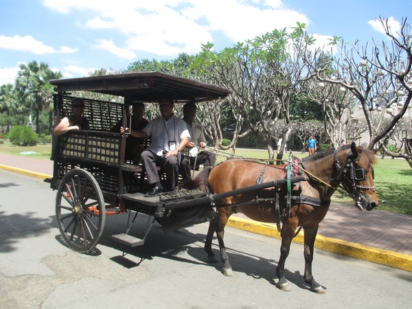 Castillan Carriage and Tour Services
