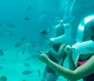 Aquanaut Helmet Diving in Boracay | Guided Water Activity