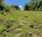 Beginner-Friendly Batanes Hike   Mt. Matarem Climb
