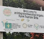 Experience Farm Tourism | Half Day Package with Brunch