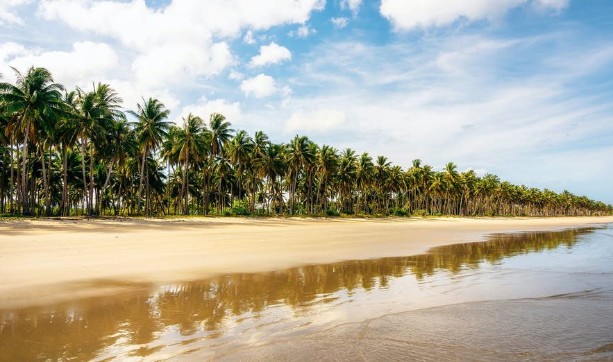 San Vicente Palawan Travel Guide Home Of The Longest Beach