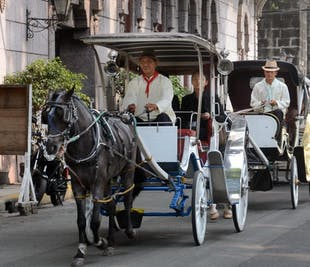 Historical Tour of Intramuros on Horse-Drawn Carriage