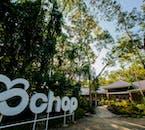 Bohol Day Tour | Chocolate Hills Adventure Park & Tarsier Sanctuary