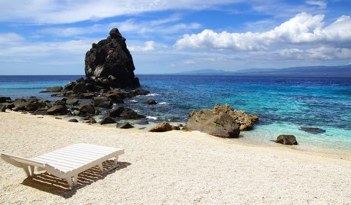 Apo Island Shared Guided Tour from Dumaguete City   With Lunch