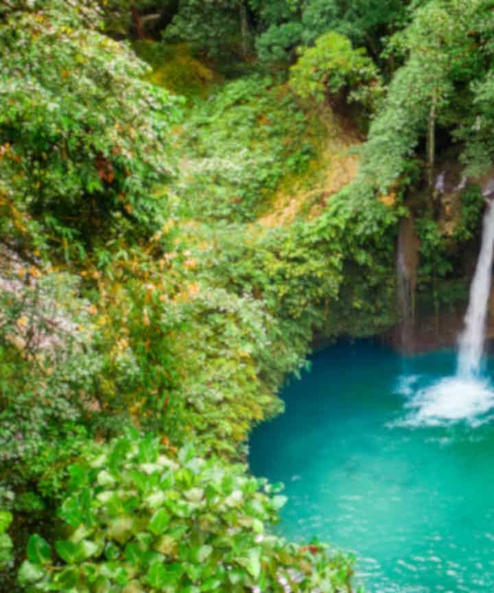Kawasan Falls Tours