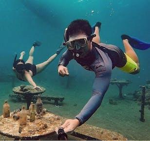 Anilao Diving Tour from Manila
