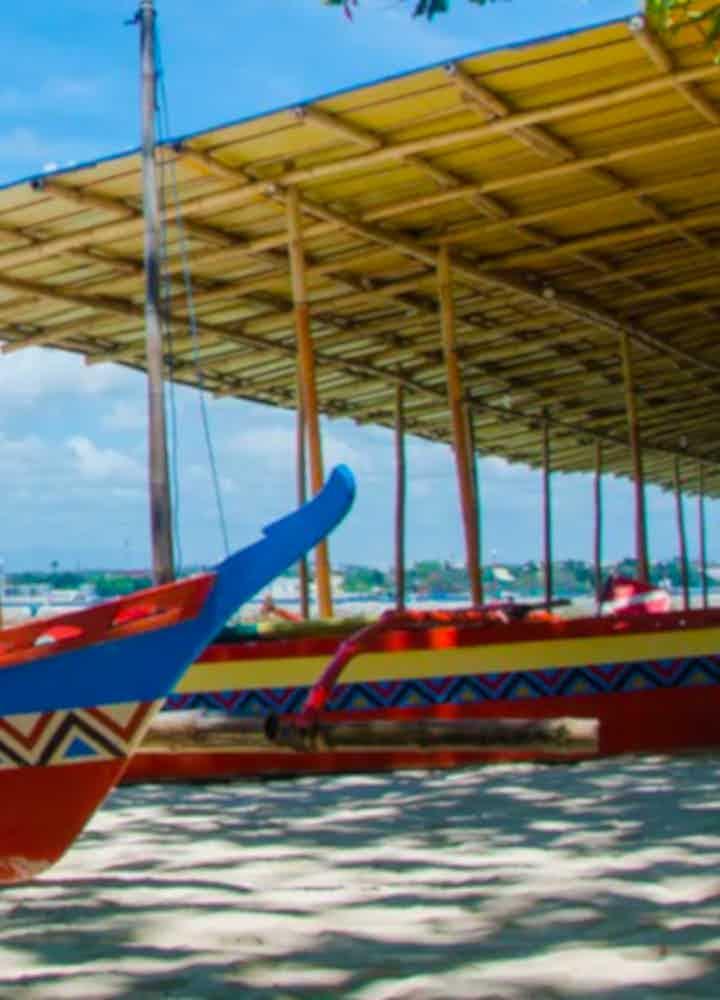 Samal Island Tours