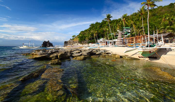 Apo Island Private Guided Tour from Dumaguete City   With Lunch