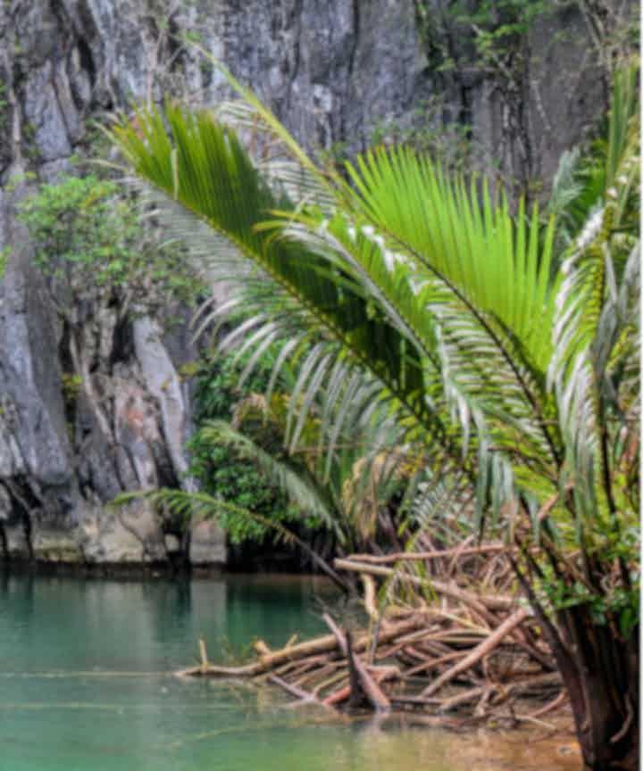 Puerto Princesa Tours