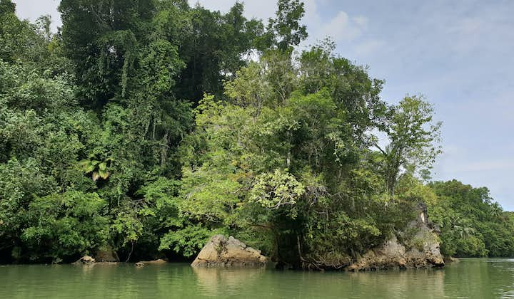 Sohoton Cave Samar Full-Day Tour | With Lunch and Transfers from Tacloban