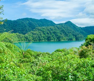 Lake Danao & Pineapple Plantation Leyte Day Tour | With Lunch