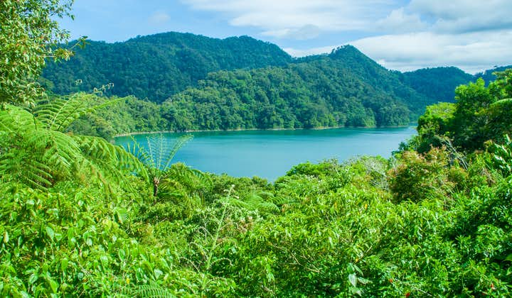 Lake Danao & Pineapple Plantation Leyte Day Tour   With Lunch