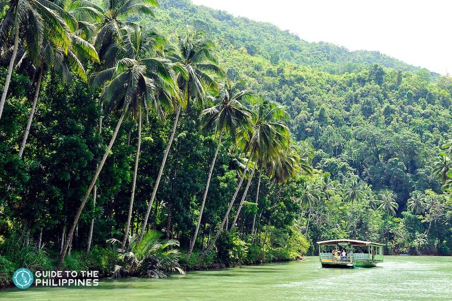 Boat cruise in Loboc River, Bohol
