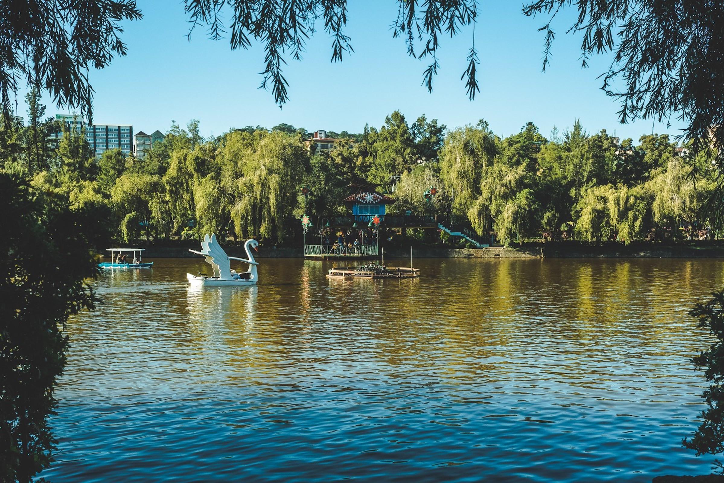 Swan Boat Ride at Burnham Park Baguio