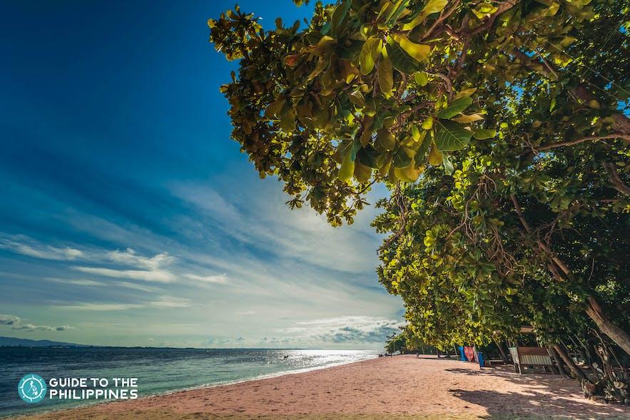Pink Beach in Great Santa Cruz Island, Zamboanga City, Philippines