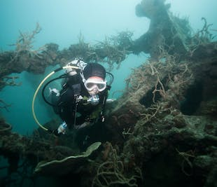 Coron Reefs & Shipwrecks I Private Day Tour with Lunch & Snacks