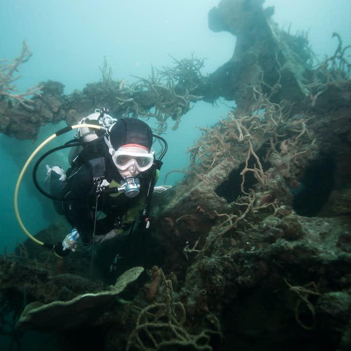 Coron Diver Shipwreck