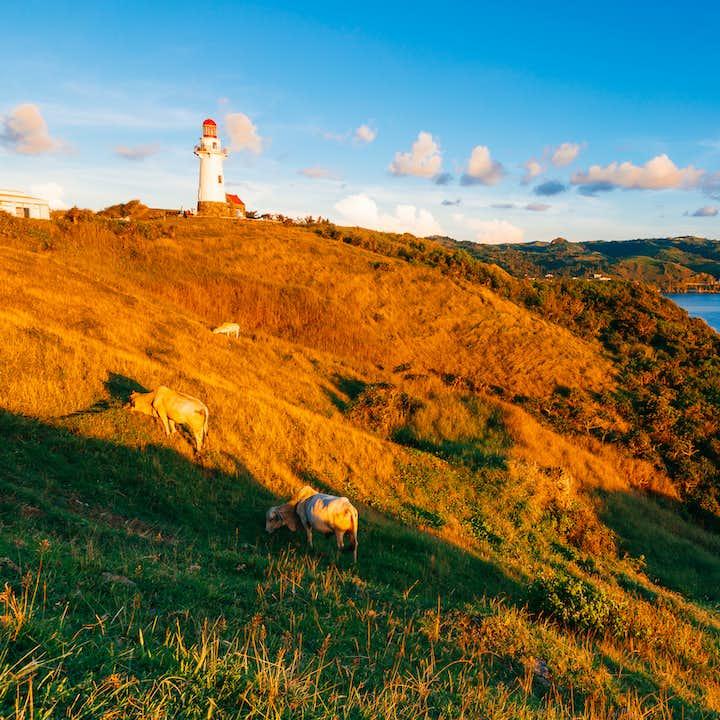 Naidi Hills Batanes