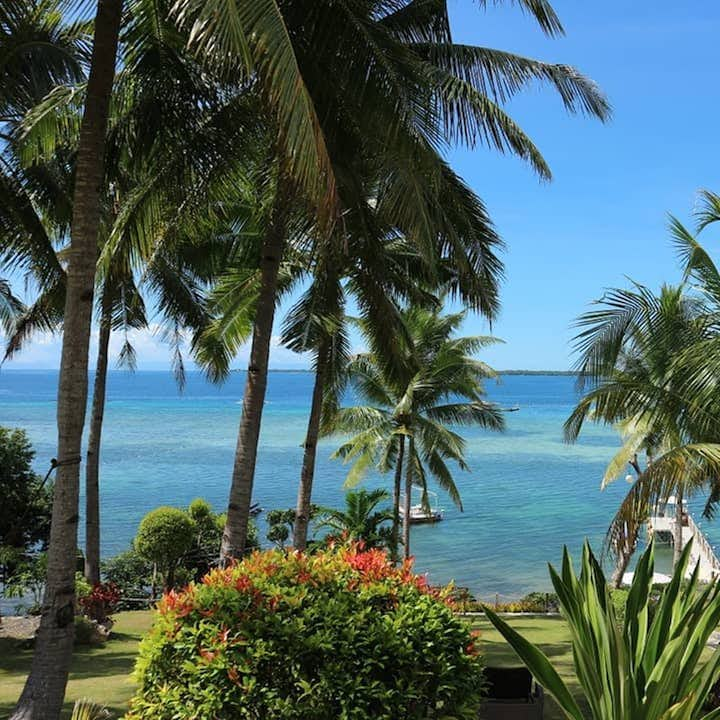 Vita Isola Bohol Private Day Tour   With Free Lunch & Transfers