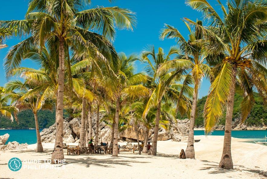 Beach in Islas de Gigantes, Carles Iloilo