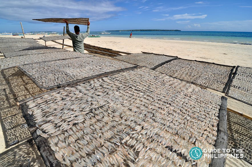 Danggit, a kind of dried fish which comes from Bantayan Island