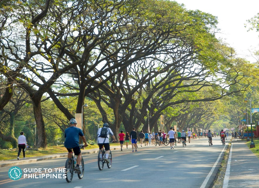People biking around the Academic Oval in UP Diliman