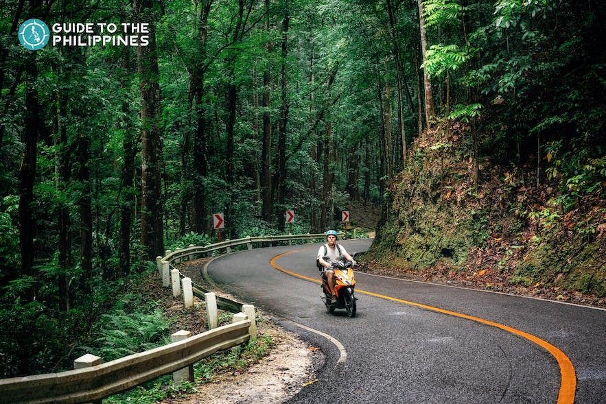 Guy passing through the Bilar Man-Made Forest in a motorcycle