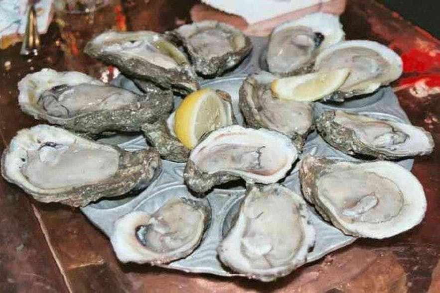 Fresh oysters from Cambuhat Oyster Farm in Bohol, Philippines