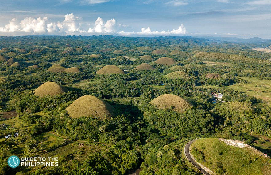 View of the iconic Chocolate Hills of Bohol, Philippines